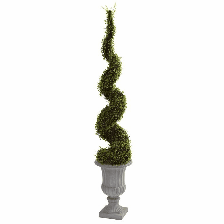 60' Mohlenbechia Spiral Tree with Decorative Urn