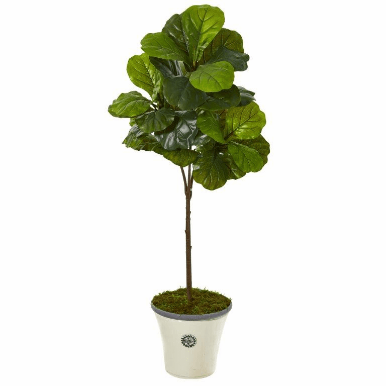 61� Fiddle Leaf Artificial Tree in Planter (Real Touch) -