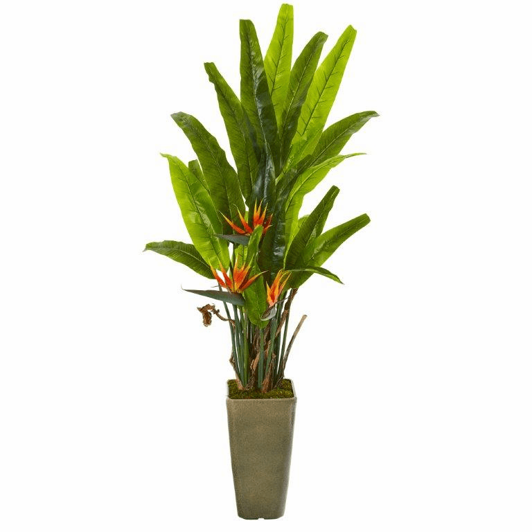 62� Bird of Paradise Artificial Plant in Olive Green Planter