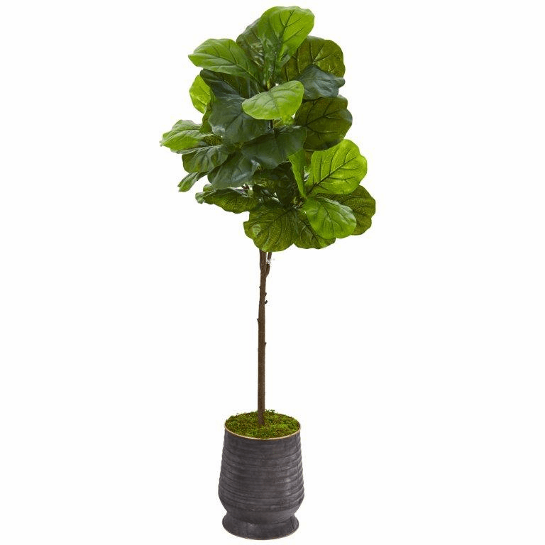 62� Fiddle Leaf Artificial Tree in Ribbed Metal Planter (Real Touch) -