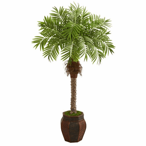 "62"" Robellini Palm Artificial Tree in Decorative Planter"