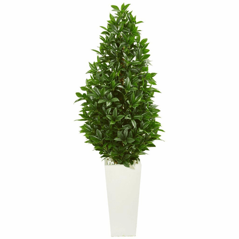 "63"" Bay Leaf Cone Topiary Artificial Tree in White Planter UV Resistant (Indoor/Outdoor)"