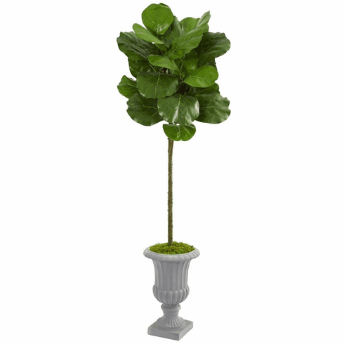 "63"" Fiddle Leaf Artificial Tree in Decorative Urn"