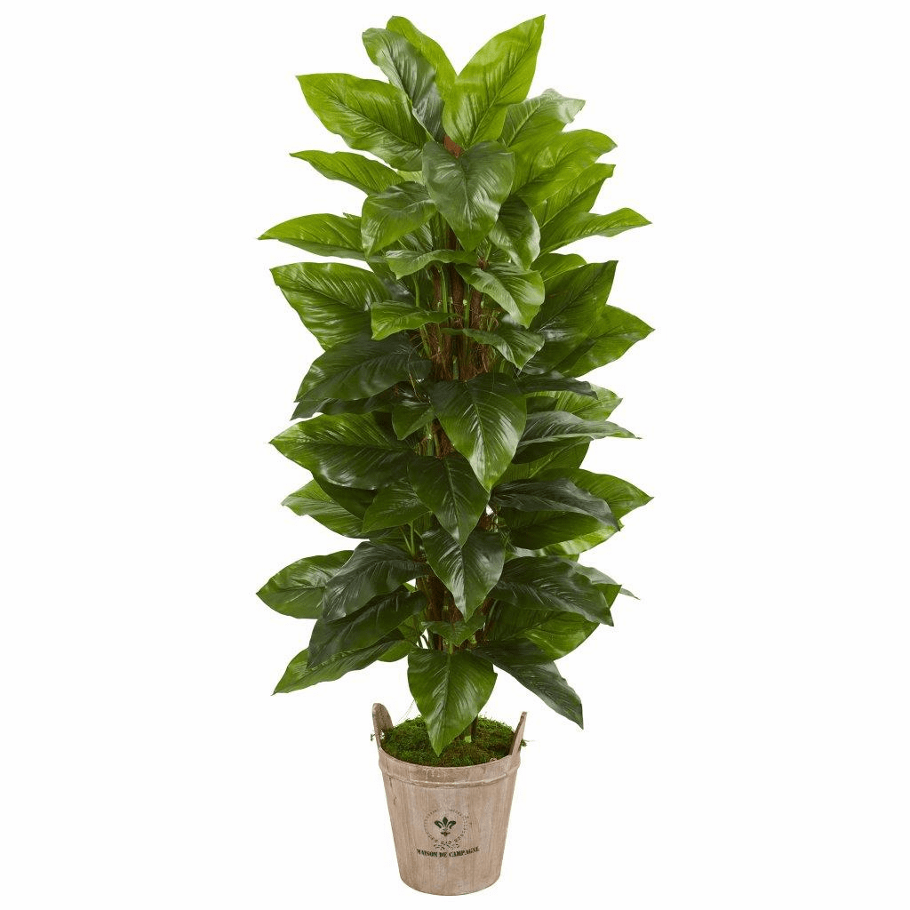 63� Large Leaf Philodendron Artificial Plant in Farmhouse Planter (Real Touch)