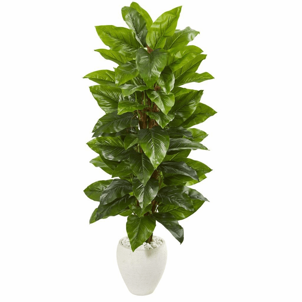 63� Large Leaf Philodendron Artificial Plant in White Planter (Real Touch)