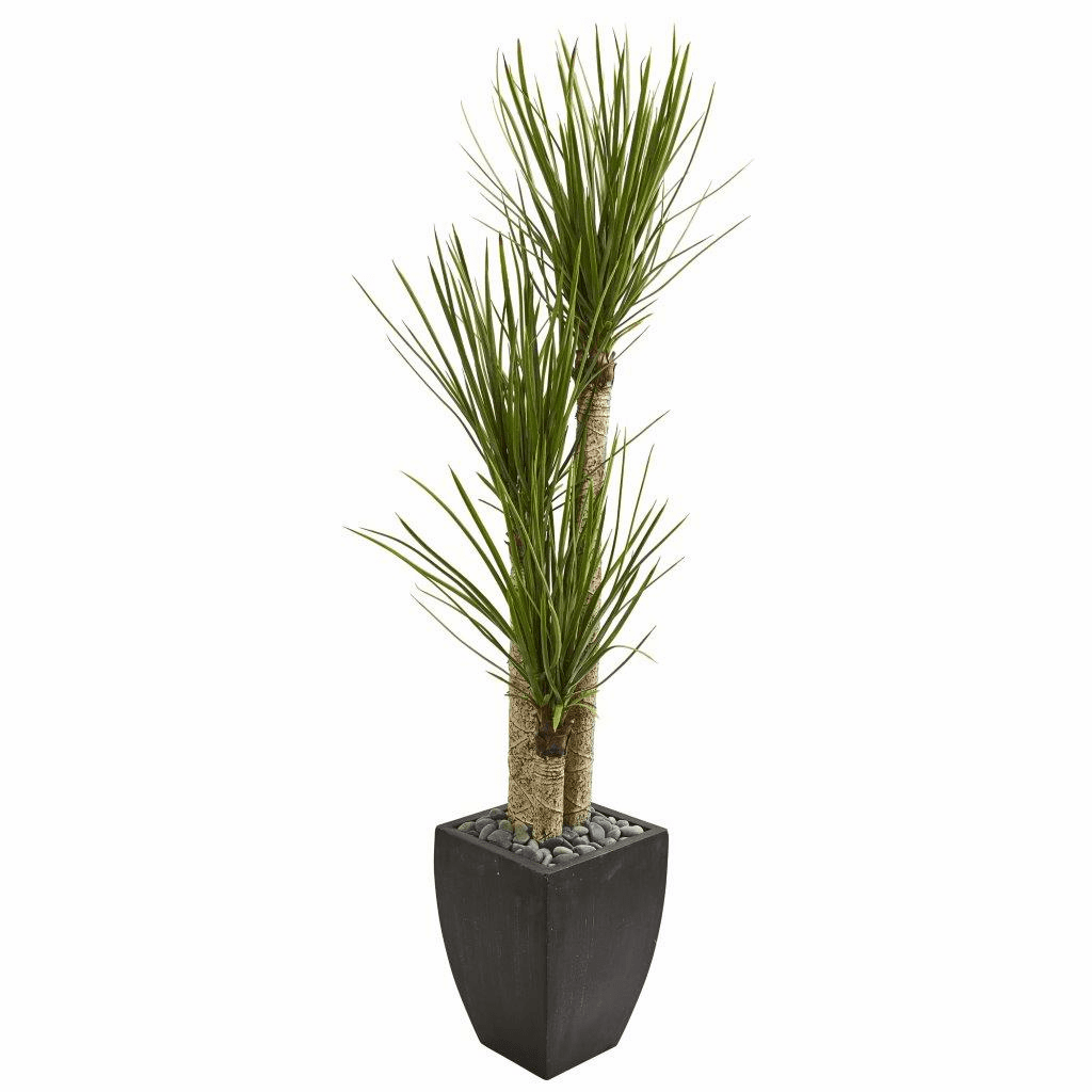 63� Yucca Artificial Tree in Black Planter