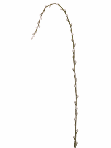 "65"" Artificial Pussy Willow Single Stem Branch - Set of 12"