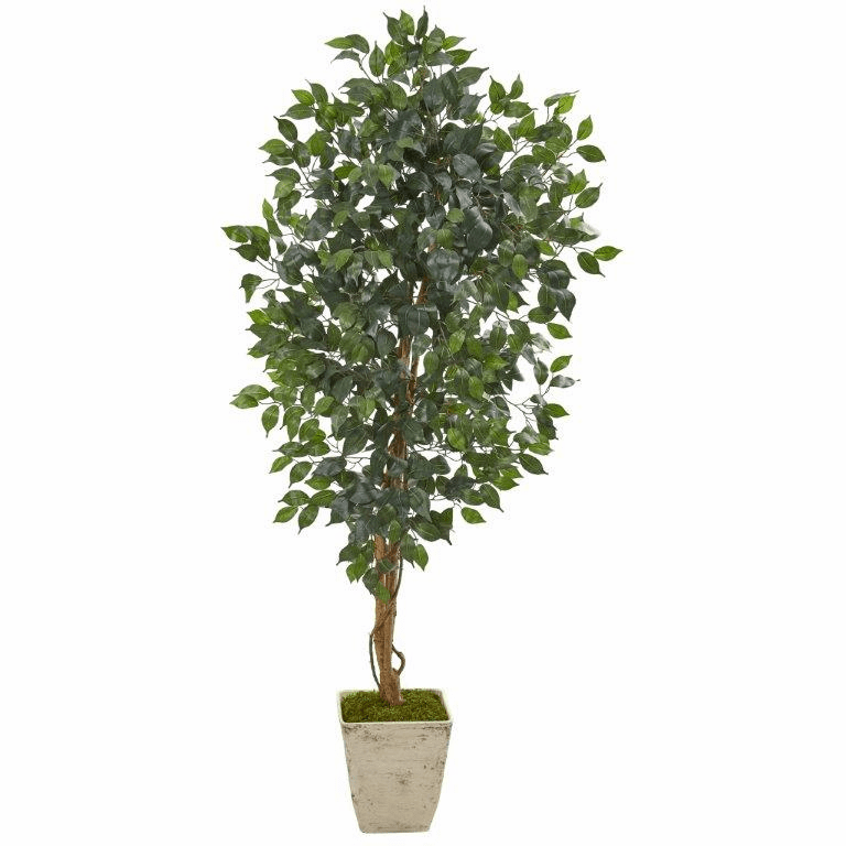 65� Ficus Artificial Tree in Country White Planter -