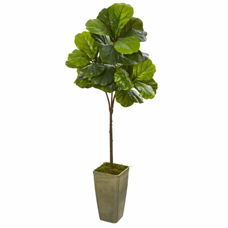 66� Fiddle Leaf Artificial Tree in Green Planter (Real Touch) -
