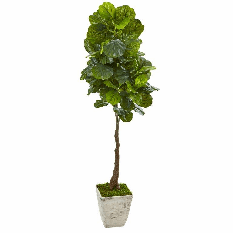 67� Fiddle Leaf Artificial Tree in Country White Planter (Real Touch) -