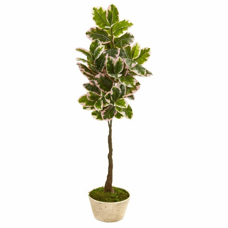 67� Variegated Rubber Leaf Artificial Tree in Planter (Real Touch) -