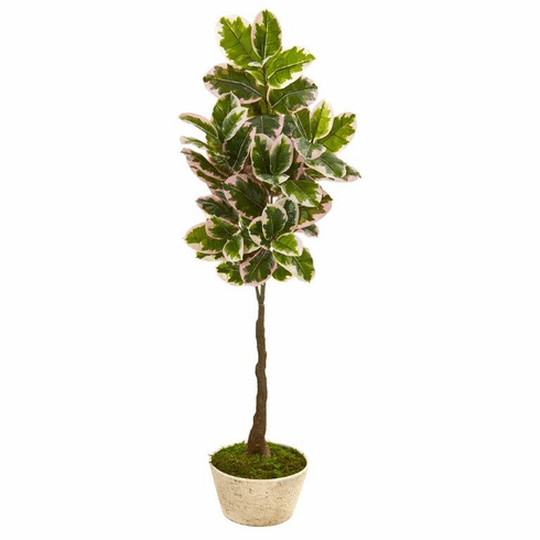 "67"" Variegated Rubber Leaf Artificial Tree in Planter (Real Touch) -"