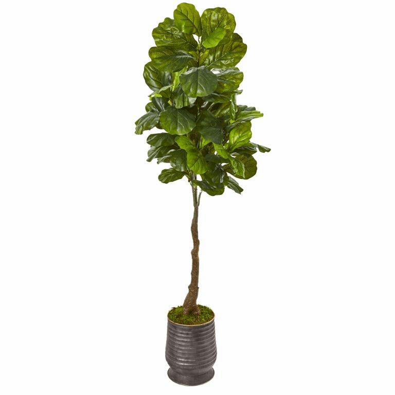 69� Fiddle Leaf Artificial Tree in Ribbed Metal Planter (Real Touch) -