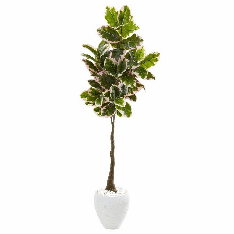 69� Variegated Rubber Leaf Artificial Tree in White Planter (Real Touch) -