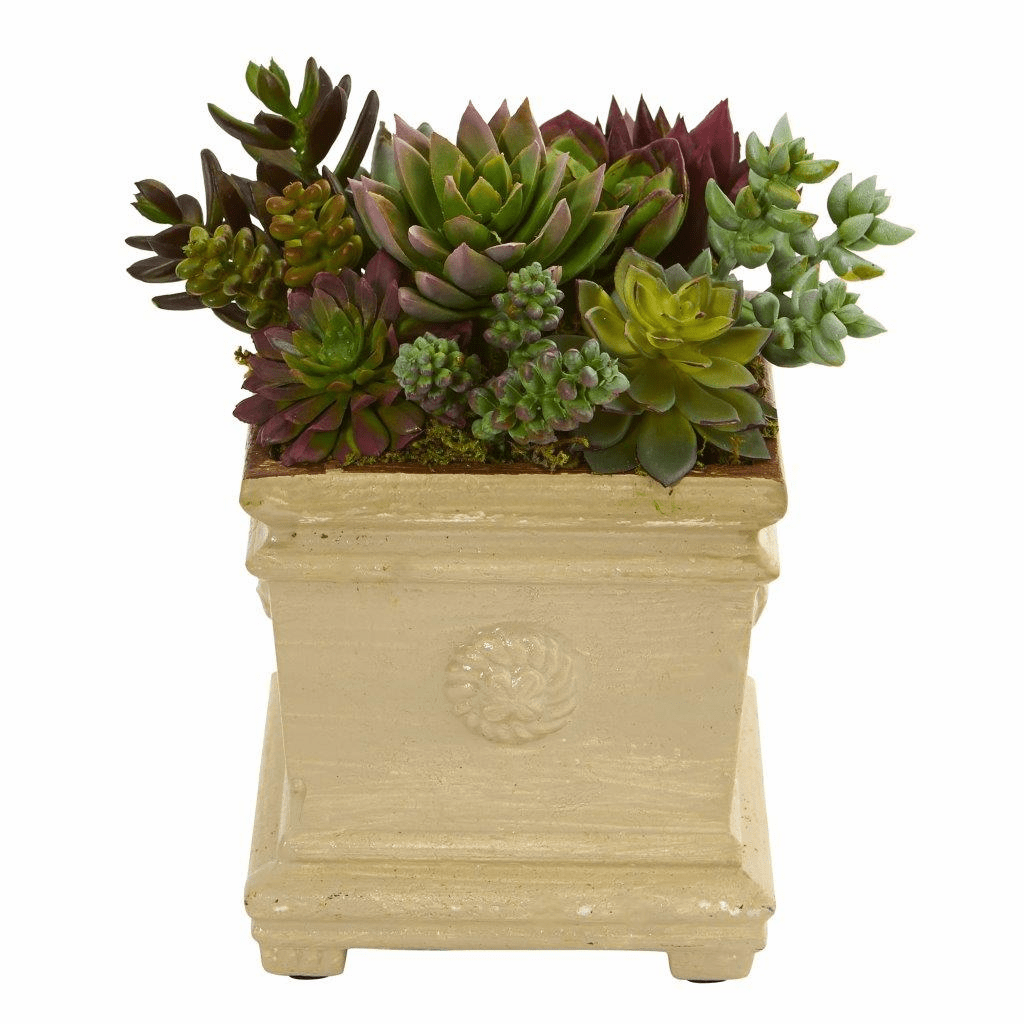 "7.5"" Mixed Succulent Artificial Plant Arrangement in Decorative Vase"