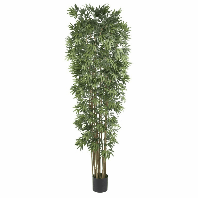 7' Bamboo Japanica Silk Tree