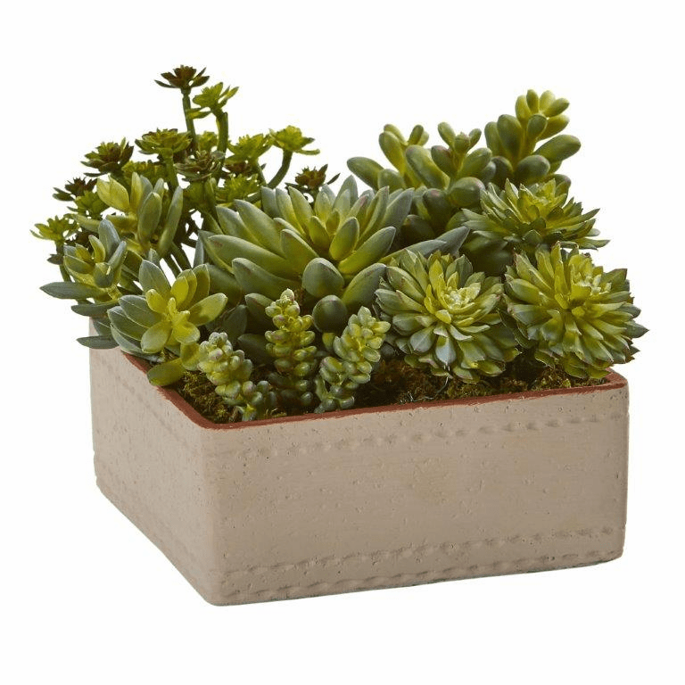7� Mixed Succulent Artificial Plant with Decorative Planter
