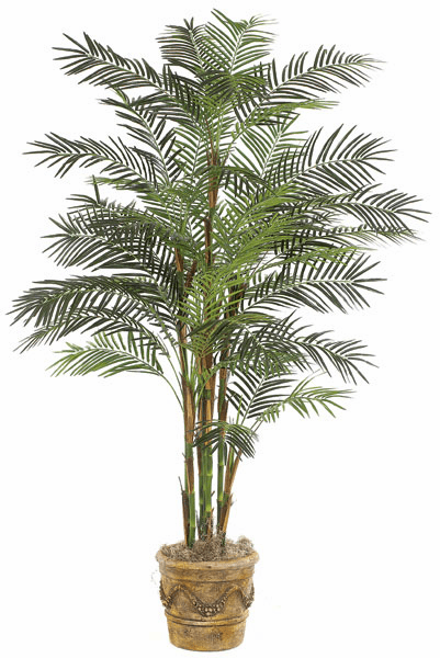 7' Reed Palm Tree