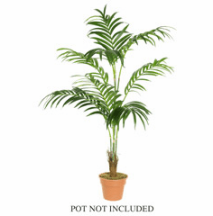 7' Silk Kentia Palm w/208 Lvs. - Non Potted