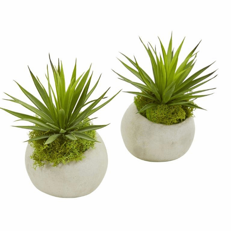 "7"" Spiky Agave Artificial Plant in Planter (Set of 2)"