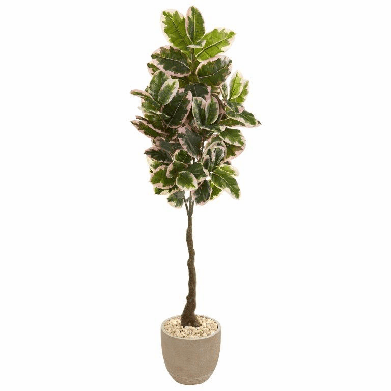 70� Variegated Rubber Leaf Artificial Tree in Sandstone Planter (Real Touch) -