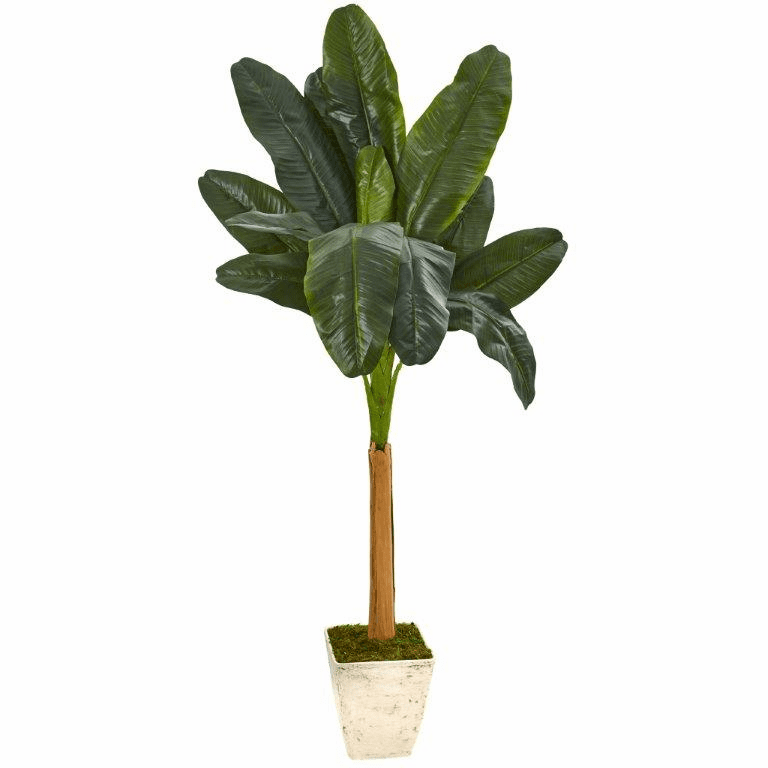 75� Banana Artificial Tree in Country White Planter