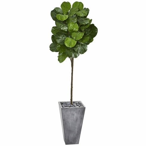 "75"" Fiddle Leaf Artificial Tree in Cement Planter"
