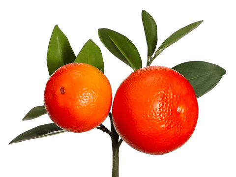 "8.5"" Artificial Orange Pick with Leaves - Set of 12"