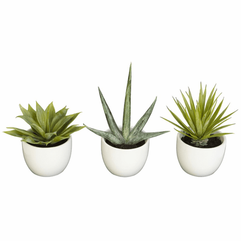 "8.5"" Southwest Artificial Cactus Collection (Set of 3)"