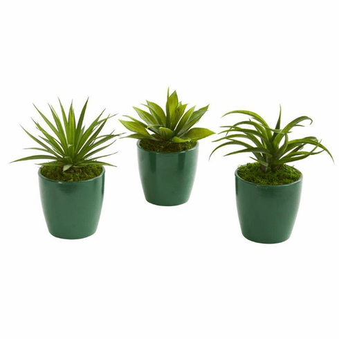 """8"""" Mini Agaves Artificial Plant in Green Planter (Set of 3)"""