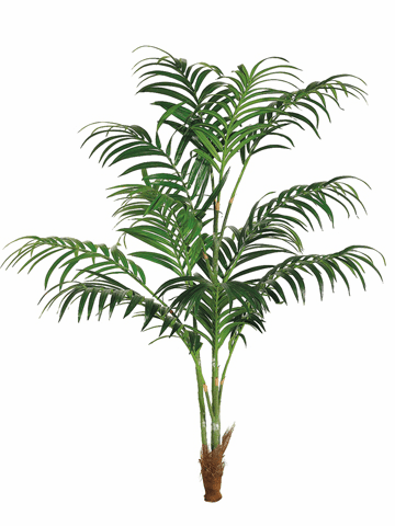 8' Silk Kentia Palm w/308 Lvs. - Non Potted