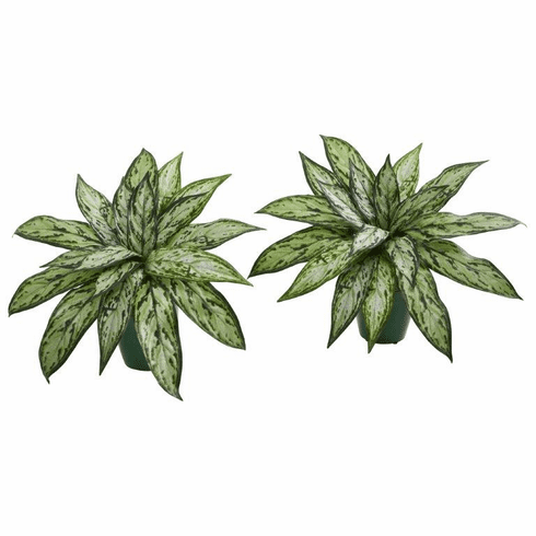 """8"""" Silver Queen Artificial Plant in Green Planter (Set of 2)"""