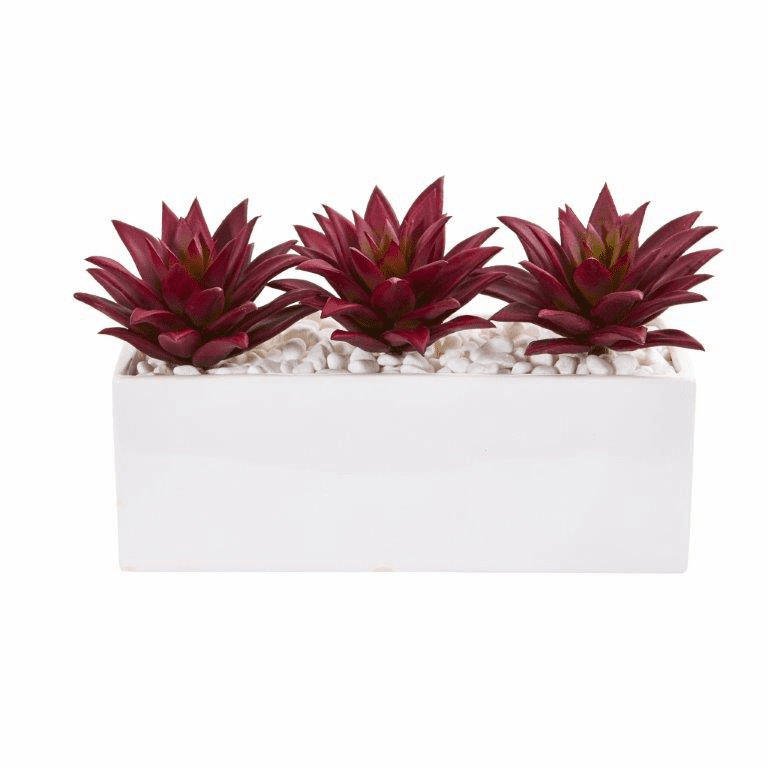 8� Triple Agave Succulent Artificial Plant in White Vase