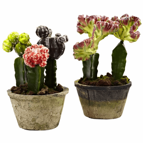 "9-10"" Artificial Colorful Cactus Gardens - Potted  (Set of 2)"