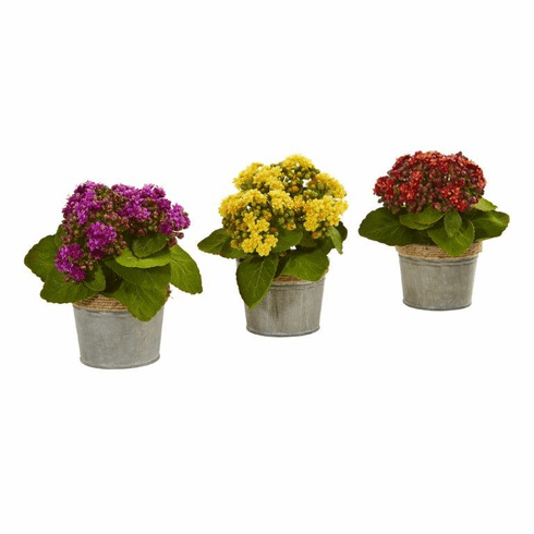 "9"" Kalanchoe Artificial Arrangements (Set of 3)"