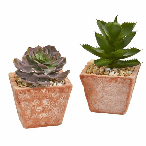 "9"" Mixed Succulent Artificial Plant in Terra Cotta Planter (Set of 2)"