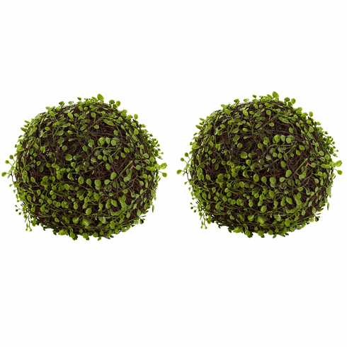 "9"" Mohlenbechia Ball (Set of 2)"