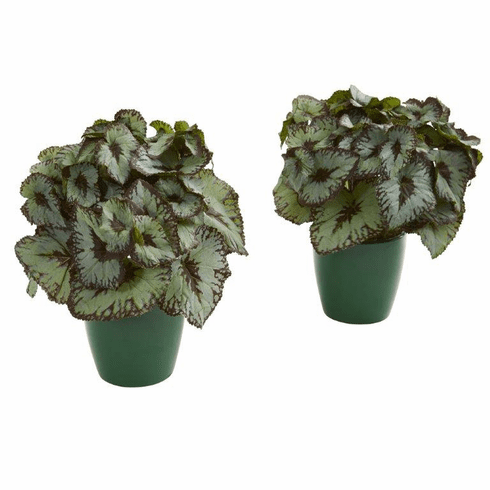 "9"" Rex Begonia Artificial Plant in Green Planter (Set of 2)"
