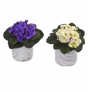 African Violet Artificial Plant in Marble Vase (Set of 2) - Assorted