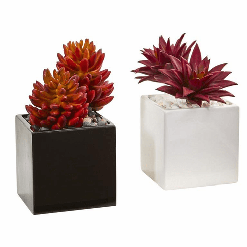 Agave and Spiky Succulent Artificial Plant in Vase (Set of 2)