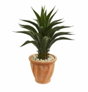 Agave Artificial Plant in Terra Cotta Planter - N/A
