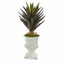 2' Agave Artificial Plant in White Urn