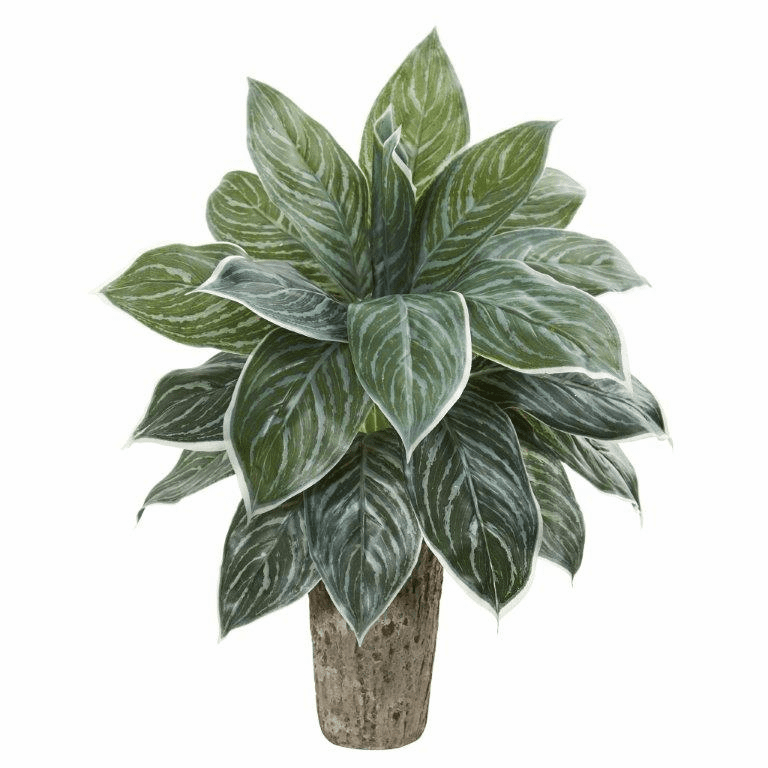"""24"""" Aglonema Artificial Plant in Weathered Oak Vase (Real Touch)"""