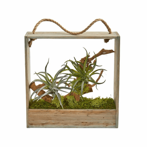 """12"""" Air Plant Artificial Succulent in Decorative Hanging Frame"""