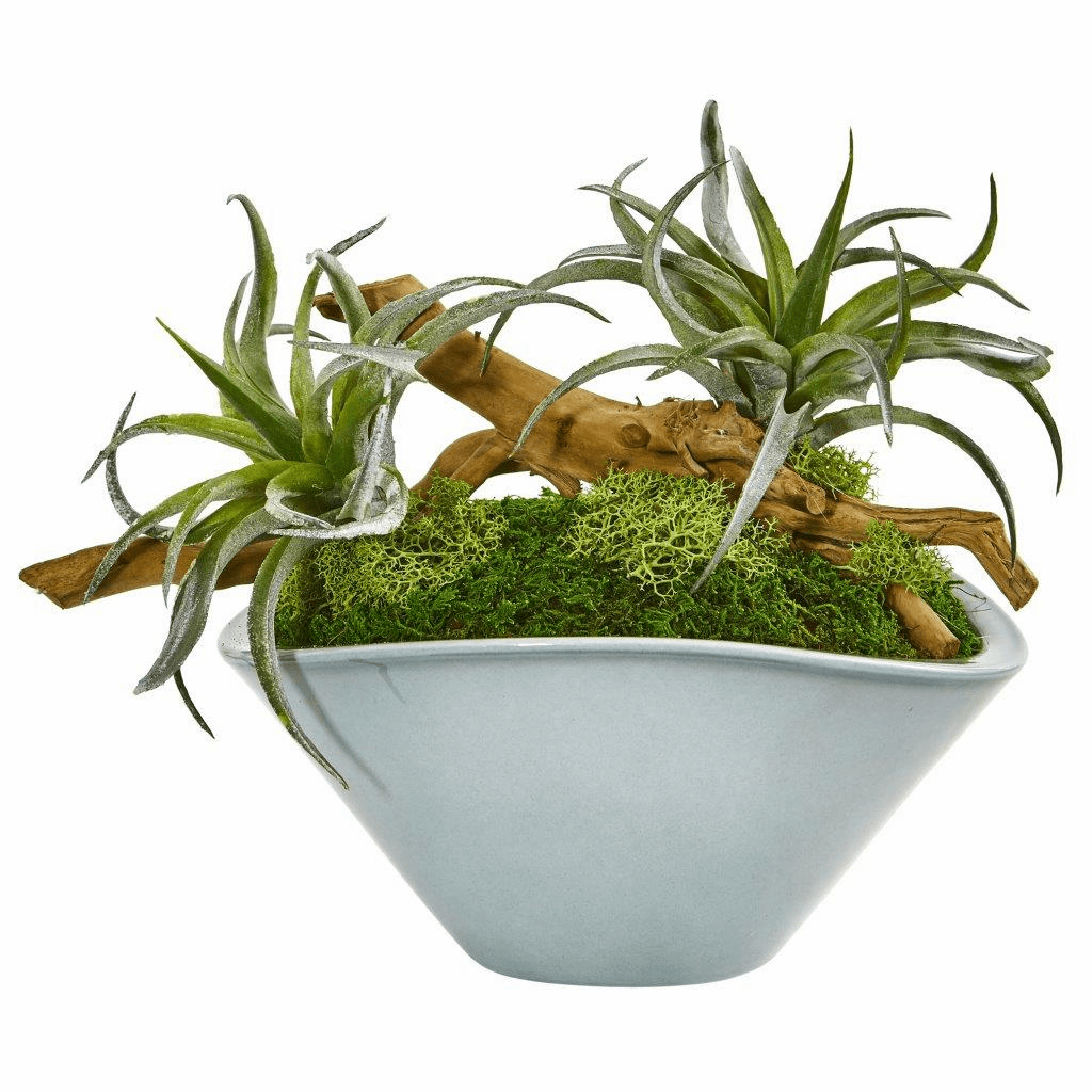 "11"" Air Plant Artificial Succulent in Green Vase"