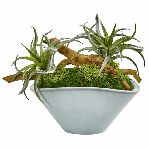 """11"""" Air Plant Artificial Succulent in Green Vase"""