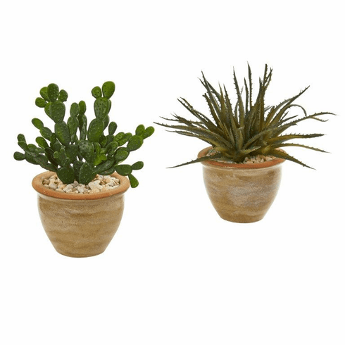 "10"" Aloe and Cactus Succulent Artificial Plant (Set of 2)"