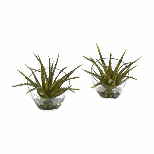 Aloe Artificial Plant in Slanted Vase (Set of 2)