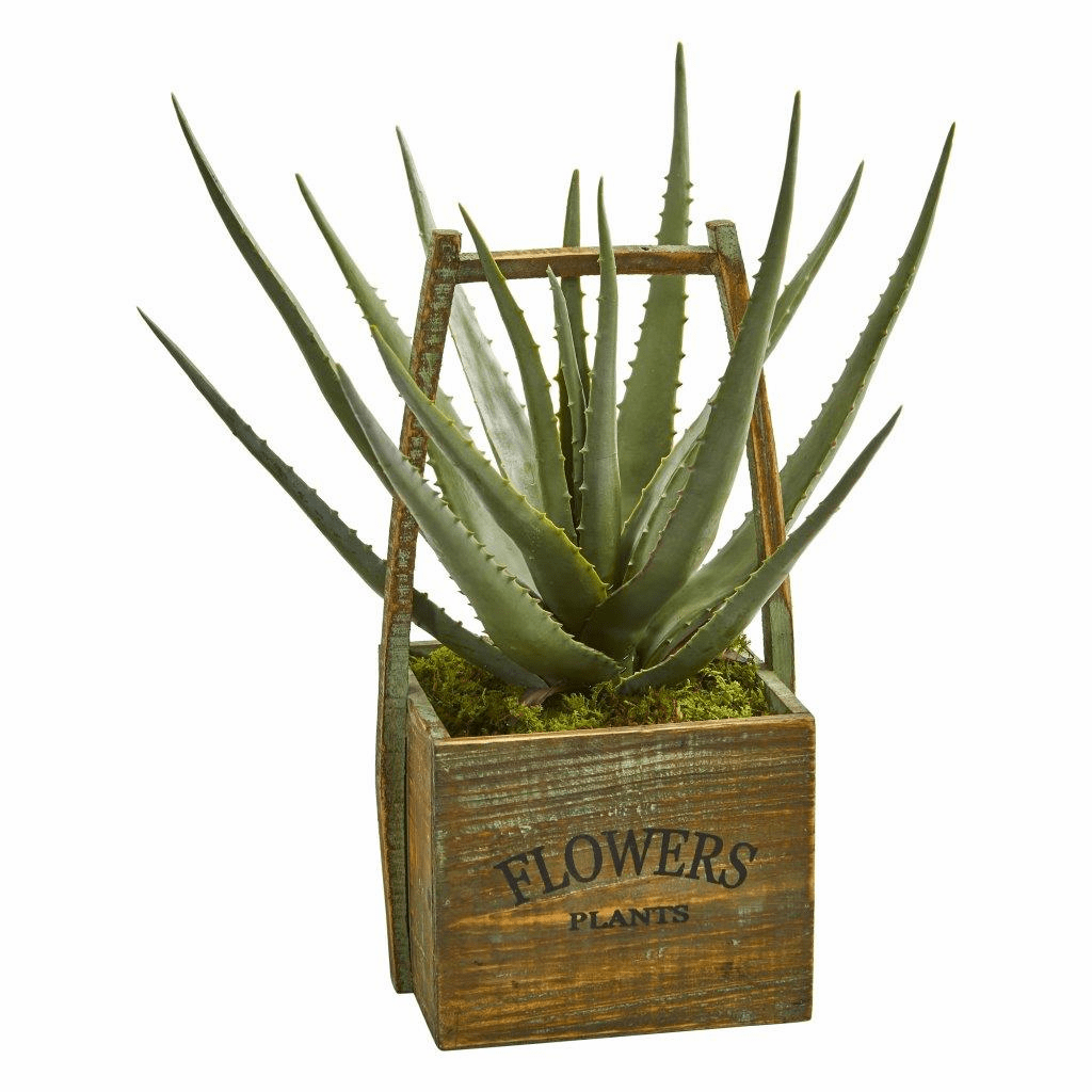 "18"" Aloe Artificial Plant in Vintage Decorative Basket"