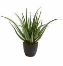 "26"" Aloe Artificial Plant"